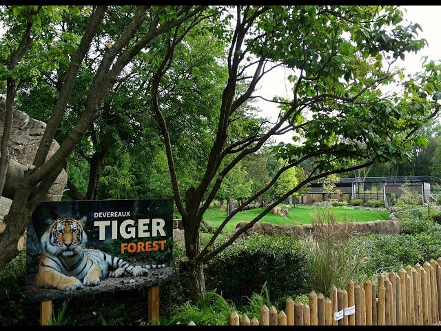 Detroit Zoo | DZS News: Episode 18