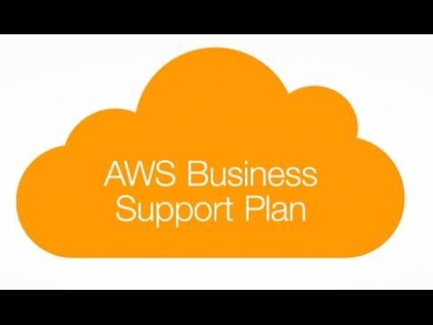 AWS Business Support