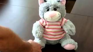 Мягкая игрушка 'Кот сказочник'