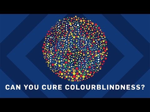 Can You Cure Colourblindness? - Brit Lab