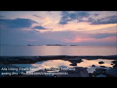 Ada Udang Dibalik Batu - Pop Mandarin Indonesia