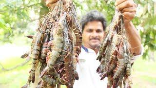Big Size Prawns Recipe  Jumbo Tiger Prawns Curry  How To Make Tiger Prawns Recipe