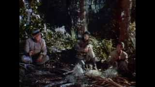 Yellowneck 1955 Civil War Movie Confederate Deserters in the Everglades Film Yellow Neck