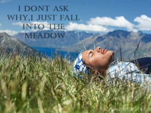 HED PE the meadow lyrics video