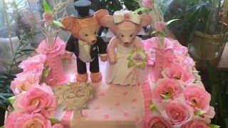 Букет из конфет, свадебные мишки, идея свадебного подарка