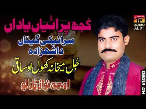 Jul Maikhana Khol   Amjad Nawaz Karlo   Punjabi And Saraiki   TP Gold  480 X 854