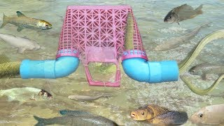 Amazing!! Smart Girl Make Fish Trap Using PVC And Basket To Catch A Lot of Fish ( part 2 )