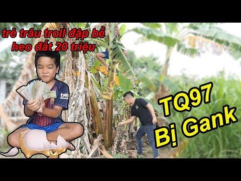 Trẻ Trâu Troll Lấy Cắp Và Đập Bể Heo Đất Để Dành 18 Năm Của TQ97