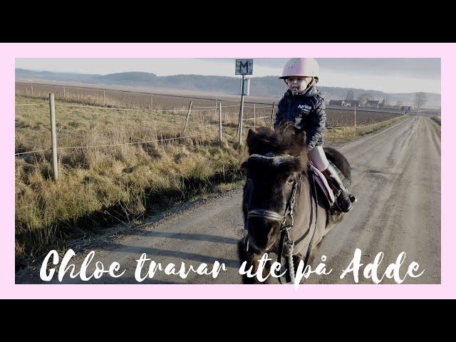 chloe rider ut på Adde -  Ponnypappan vill börja på ridskola
