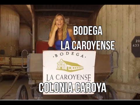 CORDOBA - COLONIA CAROYA - Bodega La Caroyense