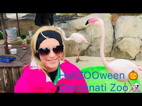 HallZOOween At Cincinnati Zoo & Our Haunted Hotel Room At Hampton Inn!