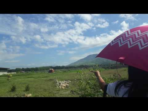Umingan for sale 6hectares
