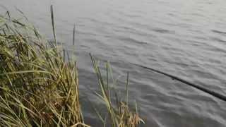 Рыбачим с Олегом.....