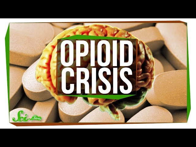 Why Is There an Opioid Crisis?