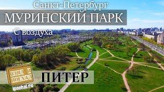 Муринский парк, съемка с дрона. Питер, Гражданский проспект смотреть онлайн в хорошем качестве бесплатно - VIDEOOO