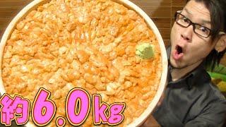 【大食い】豪華絢爛‼ウニ丼 総重量約6.0㎏~ウニだけで2.0㎏も使って~ thumbnail