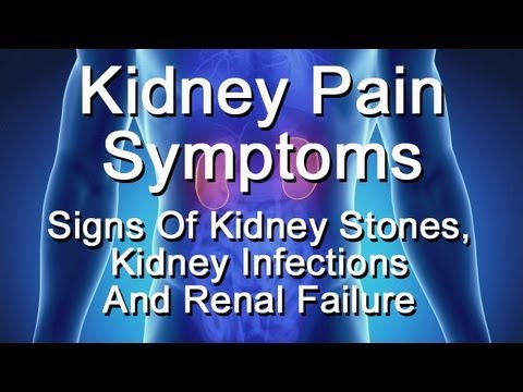 Kidney Pain Symptoms - Signs Of Kidney Stones, Kidney Infection, Renal Failure