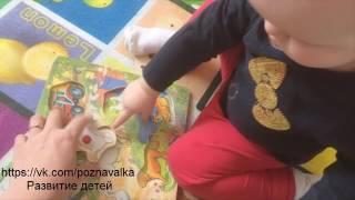 Развивающая игра в 11 месяцев.Детские рамки вкладыши из дерева.   games for children up to a year