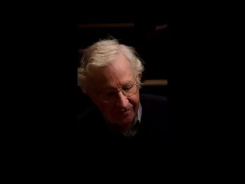 Noam Chomsky - Perception and Introspection