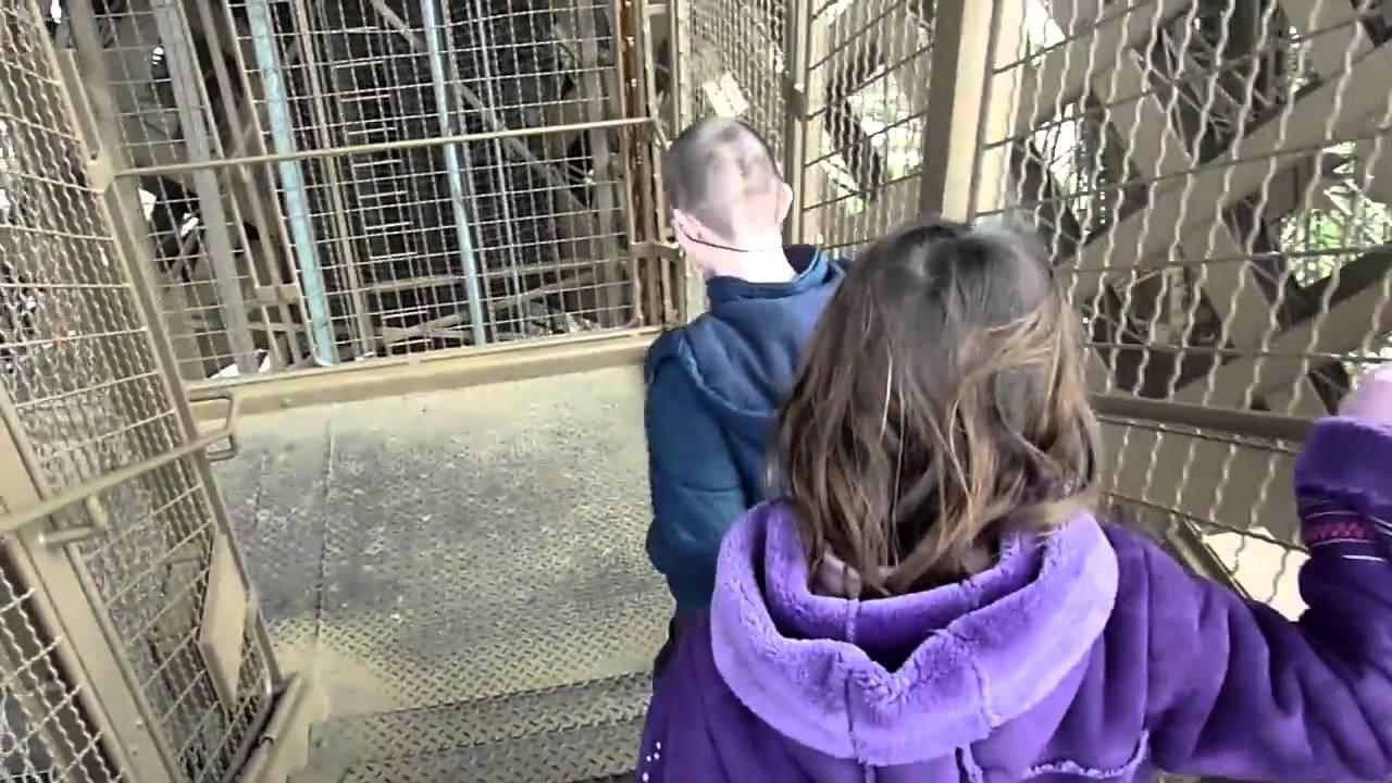 Escalier de la tour eiffel mts youtube - Escalier de la tour eiffel ...