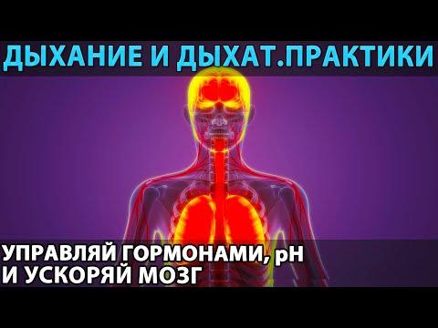 Дыхание и дыхательные практики: эндогенный «ноотроп» и психостимулятор, корректор PH и гормонов