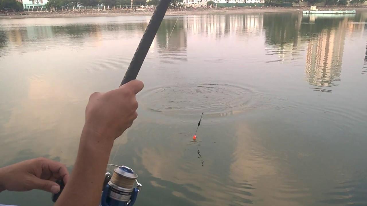 Câu cá giải trí cuối tuần tại hồ câu hà nội