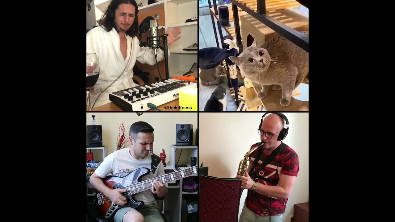 The Kiffness - Alugalug Cat (International Funk Mashup with Slap Bass & Sax)