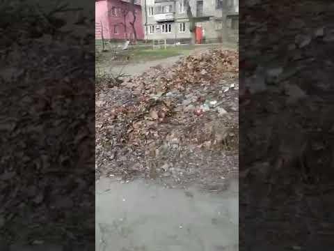 Репортер UA: Жители Запорожья страдают от гор мусора во дворах