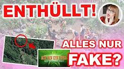 Krasser Beweis: So Fake ist das Dschungelcamp + News zum Dschungelcamp 2019