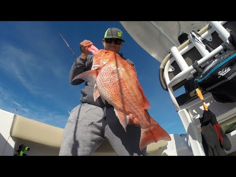 Offshore Snapper Fishing : Texas