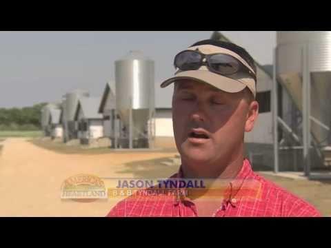 Turning Hog Waste into Environmentally Friendly Fertilizer - America's Heartland