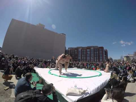 Final match of Sumo wrestling from Pro sumo wrestlers Yamamo