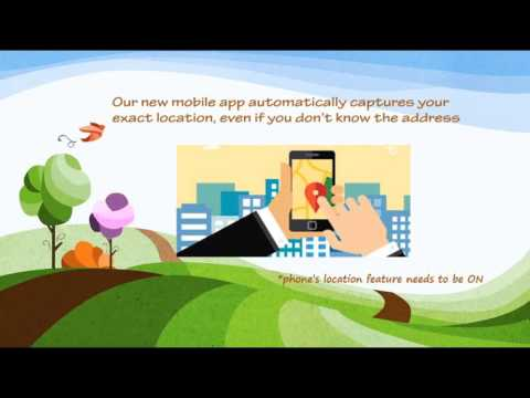 311 New Mobile App