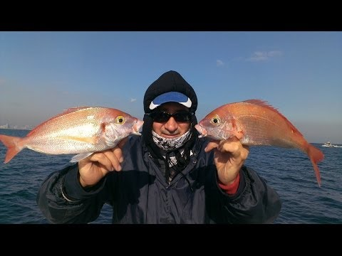 Fishing Pajel pescado Barcelona Spain صيد سمك برشلونة إسبانيا