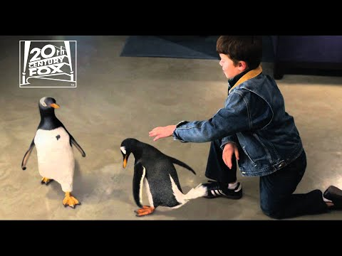 Mr. Popper Names the Penguins