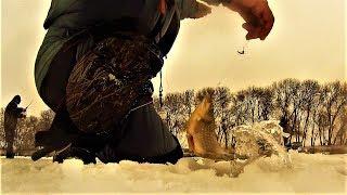 Зимняя РЫБАЛКА на хитрого КАРАСЯ!!!Как поймать в плохой клёв.Кто ищет,тот всегда найдёт!!!