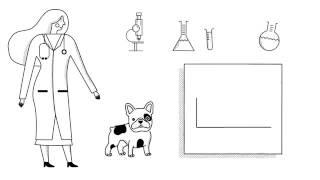 Zoetis Apoquel - Апоквел - таблетки от зуда для собак