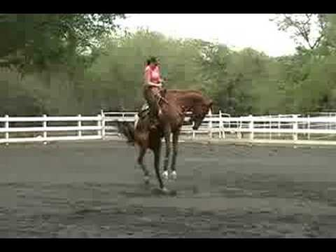 Bucking Horse with Female Rider