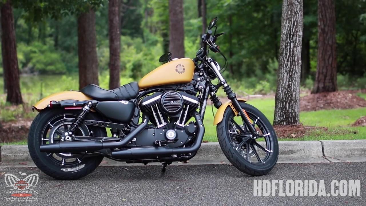 2019 2020    Harley      Davidson       Sportster    Iron    883    Specs  YouTube