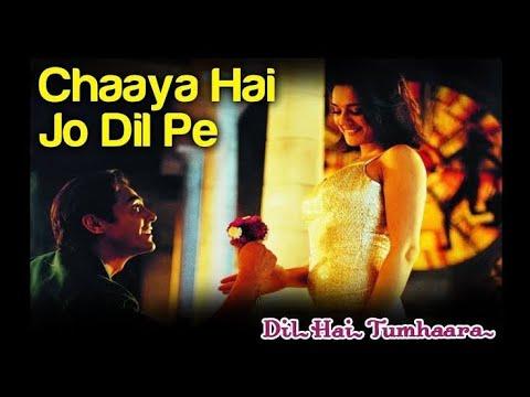 Download Chhaya Hai Jo Dil Pe l Dil Hai Tumhara l Arjun Rampal, Preeti Zinta