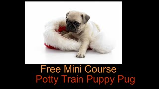 Potty Train Puppy Pug **WOW** Free Mini Course to Potty Train Puppy Pug