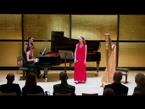 Grand Duo Concertant von C.M. von Weber