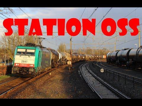 Treinen op station Oss!