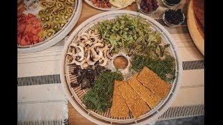 Как приготовить хлебцы из льна и овощей в домашних условиях в сушилке Ezidri