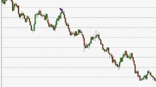 Kathy Lien: Price, Indicator and Fundamental Trading Strategies