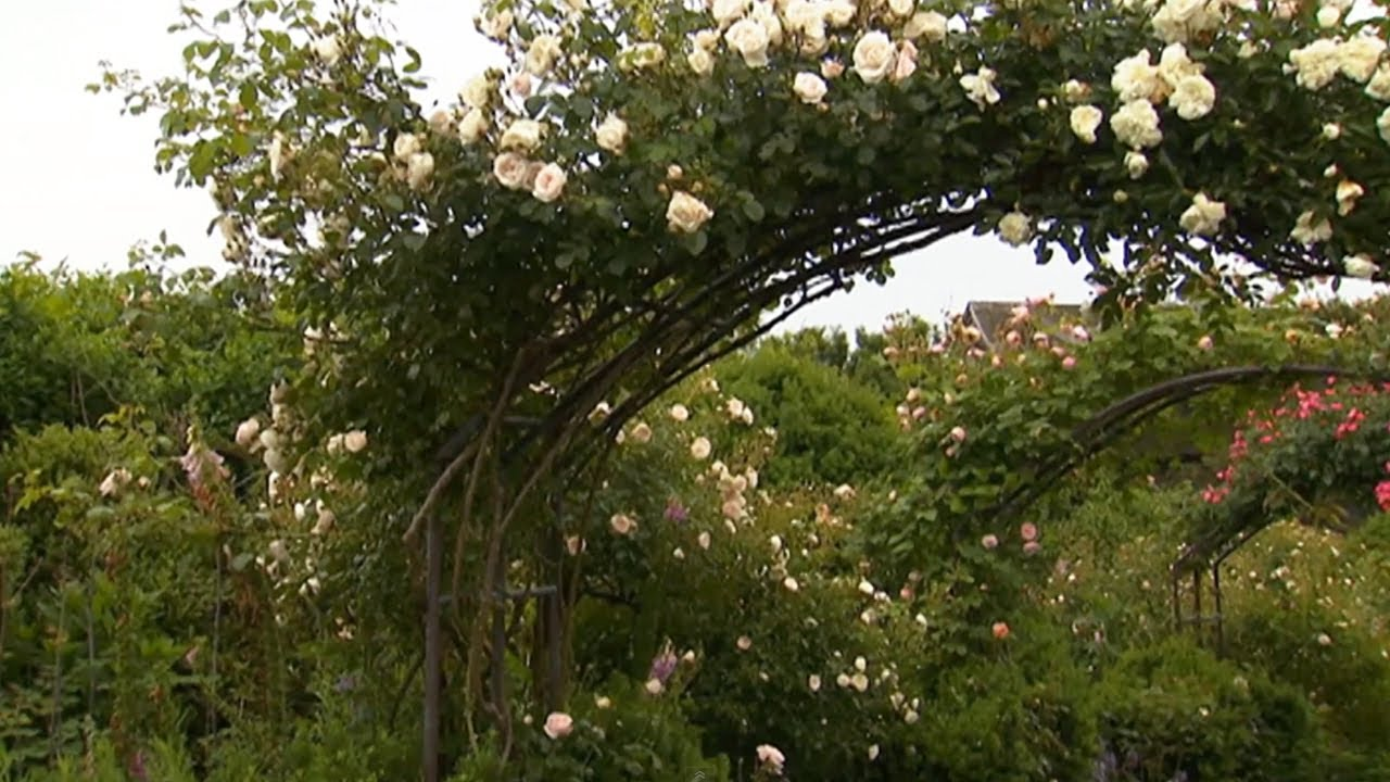 How to Design a Romantic Garden | P. Allen Smith Classics - YouTube