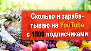 Сколько можно зарабатывать на YouTube канале с 1500 подписчиками