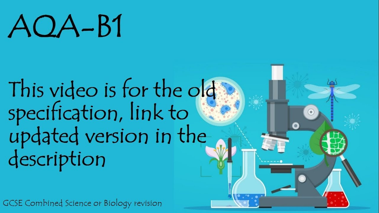 Standard grade biology past papers online