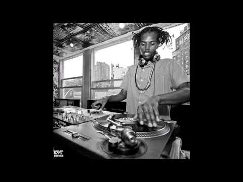 Damu the Fudgemunk - Public Assembly 🎵 (Full Album)