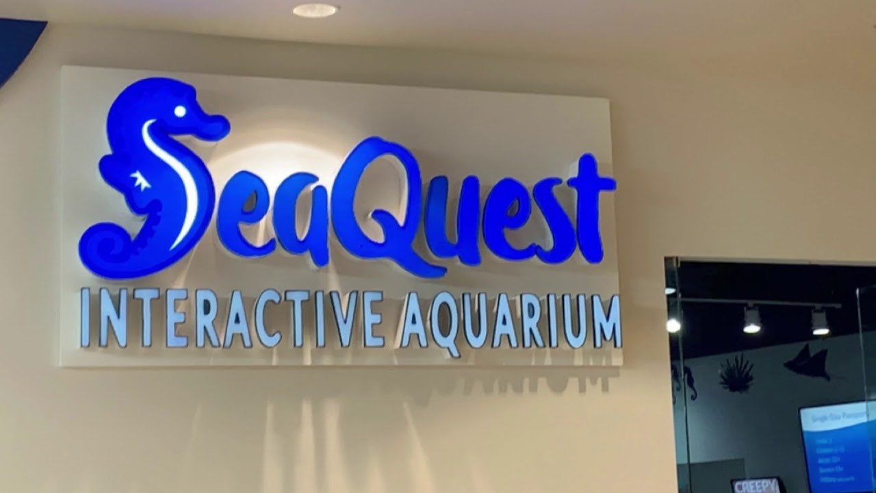 Seaquest Fort Worth Texas - YouTube